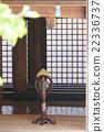 日本雅乐 器具 仪器 22336737