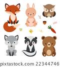 Set of cute woodland animals isolated on white 22344746