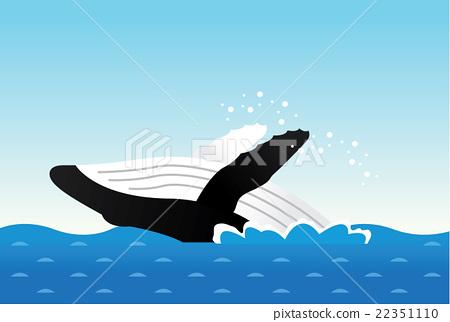 A whale 22351110