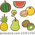 水果 吃甘蓝菜的害虫 菜虫 22351744