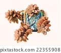 succulent plants 22355908