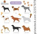 Dog breeds. Hunting dog set icon. Flat style 22357979
