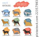 Dog breeds. Hunting dog set icon. Flat style 22357983