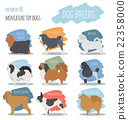 Dog breeds. Miniature toy dog set icon. Flat style 22358000