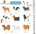 Dog breeds. Miniature toy dog set icon. Flat style 22358003