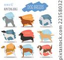 Dog breeds. Hunting dog set icon. Flat style 22358032