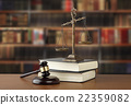 scale, law, book 22359082