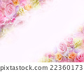 rose, roses, wallpaper 22360173