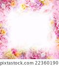 rose, roses, floral 22360190