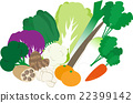 vegetables, sets, vegetable 22399142