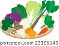 冬天的蔬菜 22399143