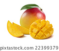 Mango composition cut piece slice isolated  22399379