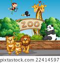 사자, 벡터, 동물원 22414597