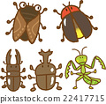 bug, insect, insects 22417715
