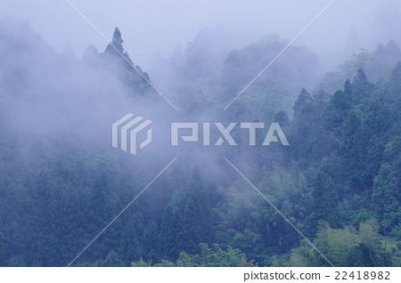 Fog _ mountain of rain 22418982