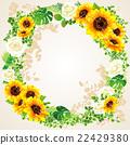 向日葵 花朵 花 22429380