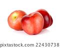 Nectarine fruit isolated on white background 22430738