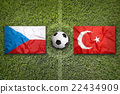 Czech Republic vs. Turkey flags on soccer field 22434909