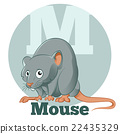 字母 鼠標 老鼠 22435329