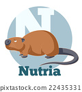 ABC Cartoon Nutria 22435331
