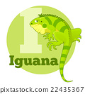 ABC Cartoon Iguana 22435367