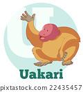ABC Cartoon Uakari 22435457