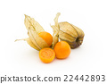 Golden Berry Cape Gooseberry (Edible Physalis): Goldenberries 22442893