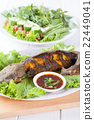 Grilled catfish 22449041