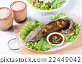 Grilled catfish 22449042