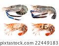 Giant freshwater prawn, Fresh shrimp 22449183