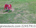 หญ้า 22457913