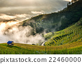 Rice fields on terraced of Mu Cang Chai District at sunrise time, YenBai province, Northwest Vietnam, worm tone 22460000