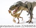 Dinosaur 22460656