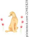 dog, eleventh sign of the chinese zodiac, flowers 22462829