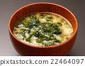 sea lettuce, miso soup, soup dish 22464097