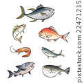 fish, fishes, vector 22471215