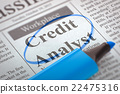 Credit Analyst Join Our Team. 22475316