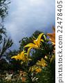 天空和鮮花 22478405