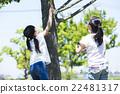 小學生 昆蟲採集 捕獲昆蟲 22481317