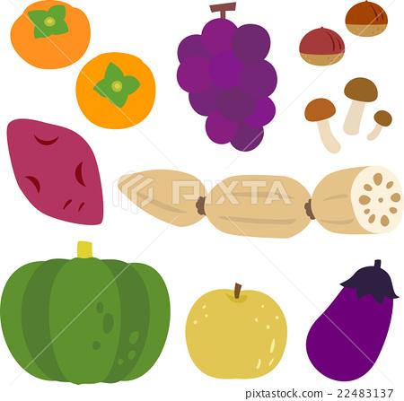 秋天 秋 蔬菜 22483137