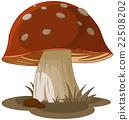 Magic Mushroom 22508202