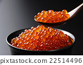 salted salmon roe, ikura-don, red caviar rice bowl 22514496