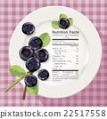 Vector of Nutrition facts in blueberries 22517558