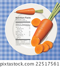 Vector of Nutrition facts in carrot on white plate 22517561