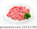 肩部烘烤 肉 肉体 22522199