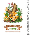 Wild Mushroom Species Growing On Stump 22524781