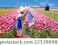 Dutch children in tulip field 22526698