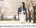 女性 導遊手冊 一排櫻桃樹 22536106