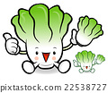 Napa cabbage Mascot to promote Vegetable selling. 22538727