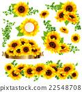 向日葵 花朵 花 22548708